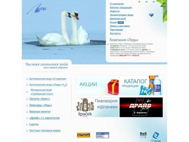 Обслуживание веб сайта для компании Ледь